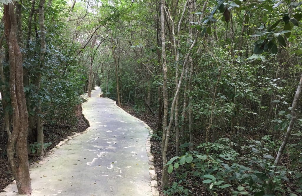 Andaz Mayakoba Walking Running and Biking Trail
