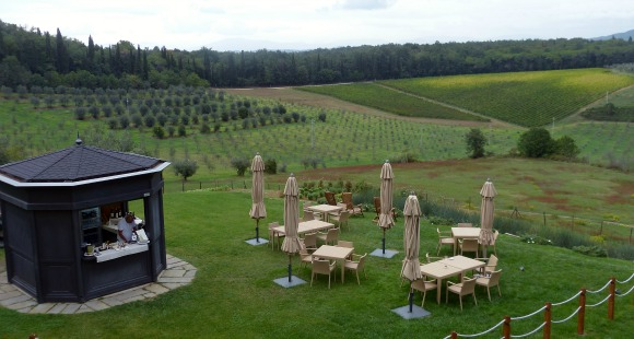 Castello del Nero: Pool Bar with View of Vineyards and Olive Trees